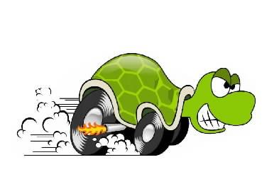 turtle faster